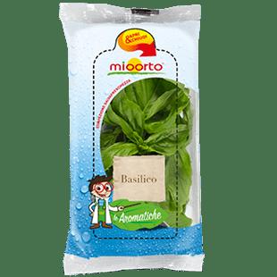 insalate aromatiche